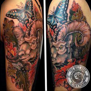 фото тату баран от 21.10.2017 №068 - tattoo ram - tattoo-photo.ru