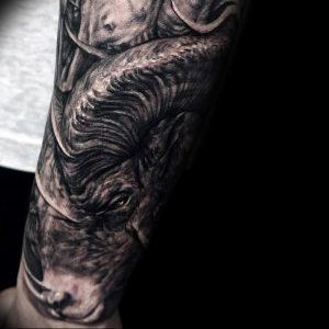 фото тату баран от 21.10.2017 №086 - tattoo ram - tattoo-photo.ru