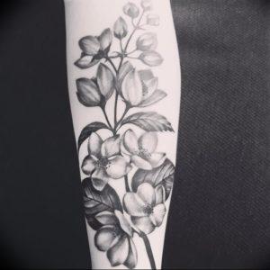 фото тату жасмин от 18.10.2017 №008 - tattoo jasmine - tattoo-photo.ru