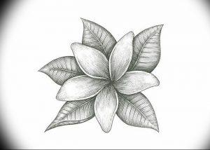фото тату жасмин от 18.10.2017 №021 - tattoo jasmine - tattoo-photo.ru