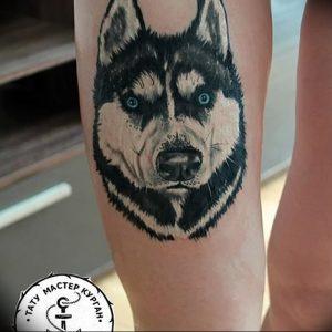 фото тату хаски от 07.10.2017 №018 - tatu husky - tattoo-photo.ru