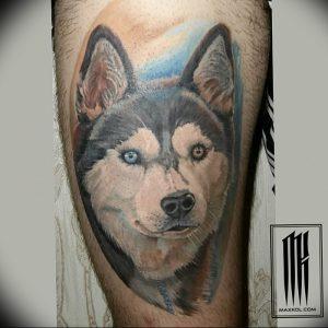 фото тату хаски от 07.10.2017 №038 - tatu husky - tattoo-photo.ru