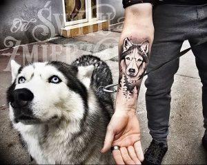 фото тату хаски от 07.10.2017 №052 - tatu husky - tattoo-photo.ru