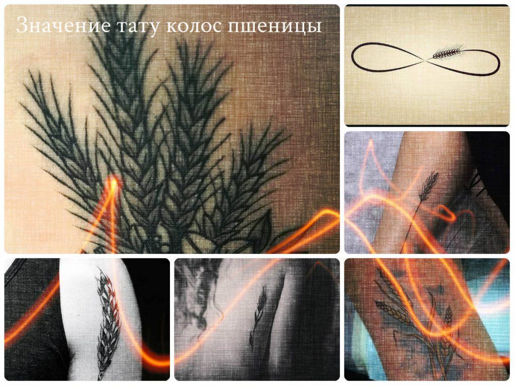 Значение тату колос пшеницы - фото примеры интересных готовых рисунков татуировки с колосом