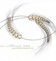 фото тату колос пшеницы от 27.12.2017 №012 — tattoos ear of wheat — tattoo-photo.ru