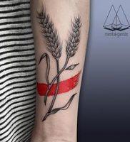 фото тату колос пшеницы от 27.12.2017 №013 — tattoos ear of wheat — tattoo-photo.ru