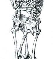 фото тату скелет от 28.12.2017 №018 — tattoo skeleton — tattoo-photo.ru