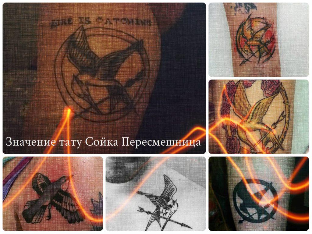 Значение тату Сойка Пересмешница - коллекция фотографий готовых рисунков татуировки на теле