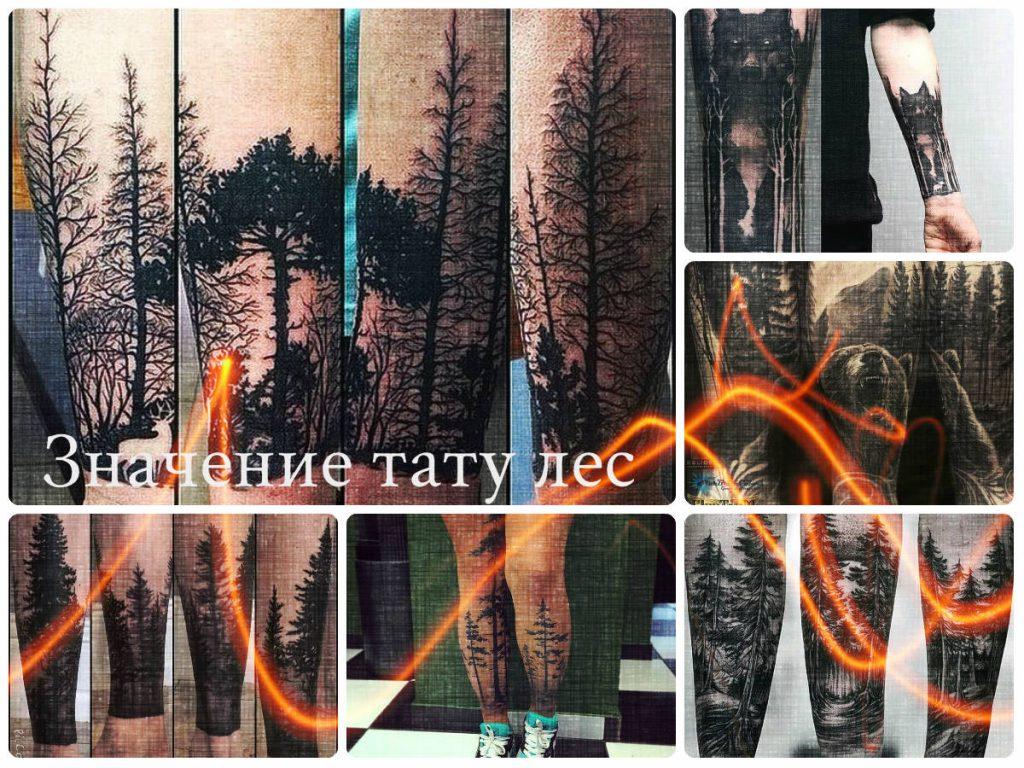 Значение тату лес - коллекция фотографий с примерами рисунков готовых татуировок