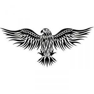 фото тату Орел от 10.03.2018 №017 - tattoo eagle - tattoo-photo.ru