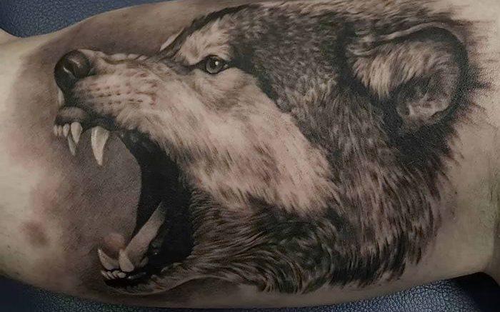 фото тату волк от 12.03.2018 №088 - tattoo wolf - tattoo-photo.ru