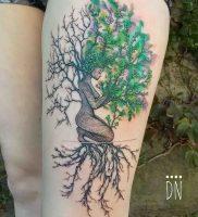 фото тату древо жизни от 09.01.2018 №118 — tattoo tree of life — tattoo-photo.ru