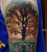 фото тату древо жизни от 09.01.2018 №129 — tattoo tree of life — tattoo-photo.ru