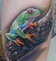 фото тату лягушка от 08.01.2018 №121 — tattoo frog — tattoo-photo.ru