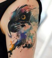 фото тату ястреб от 27.01.2018 №003 — tattoo hawk — tattoo-photo.ru