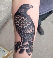 фото тату ястреб от 27.01.2018 №007 — tattoo hawk — tattoo-photo.ru