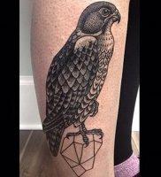 фото тату ястреб от 27.01.2018 №009 — tattoo hawk — tattoo-photo.ru