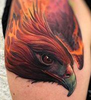 фото тату ястреб от 27.01.2018 №011 — tattoo hawk — tattoo-photo.ru