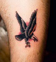 фото тату ястреб от 27.01.2018 №093 — tattoo hawk — tattoo-photo.ru