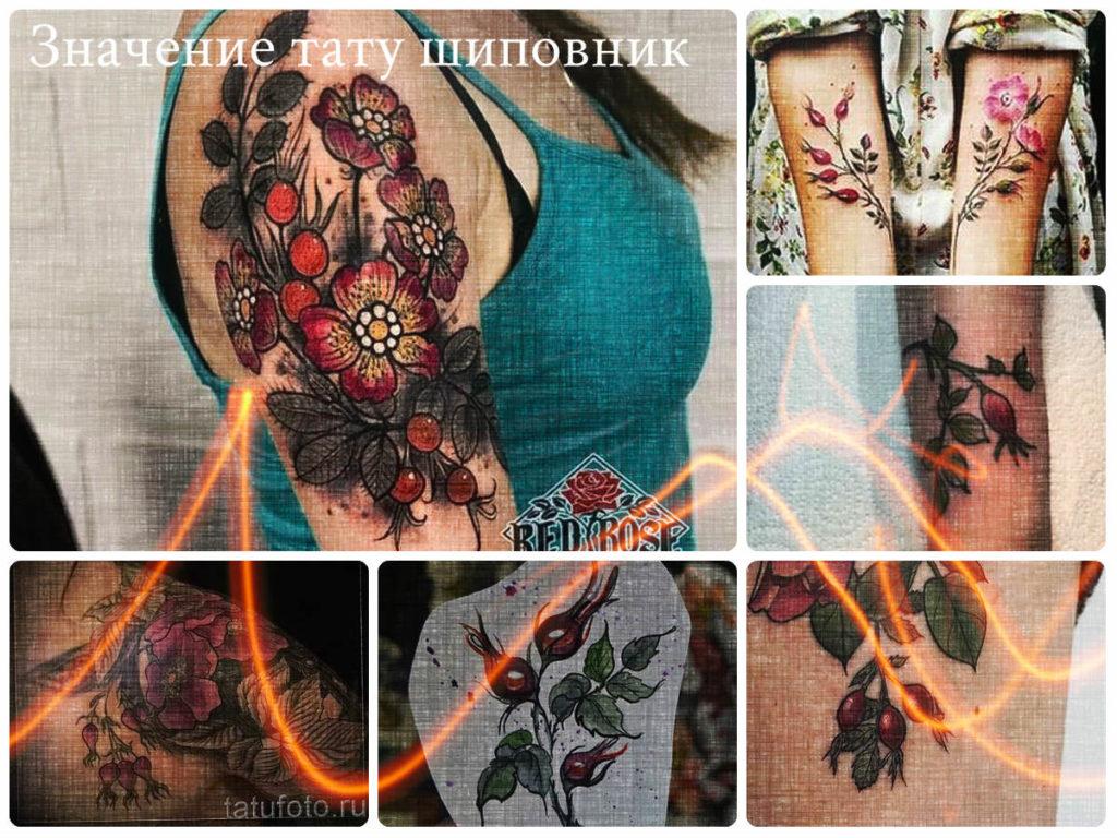 Значение тату шиповник - фото коллекция интересных рисунков татуировки
