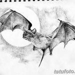 фото Эскизы тату летучая мышь от 11.04.2018 №091 - Sketches bat tattoo - tattoo-photo.ru
