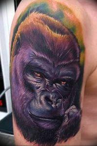 фото тату горилла от 27.03.2018 №002 - gorilla tattoo - tattoo-photo.ru
