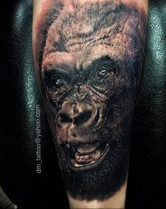 фото тату горилла от 27.03.2018 №020 - gorilla tattoo - tattoo-photo.ru
