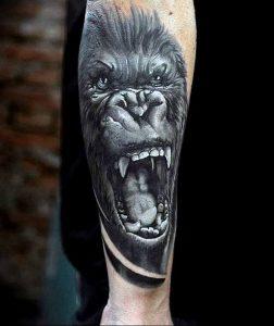 фото тату горилла от 27.03.2018 №027 - gorilla tattoo - tattoo-photo.ru