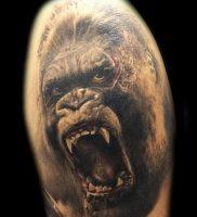 фото тату горилла от 27.03.2018 №113 — gorilla tattoo — tattoo-photo.ru