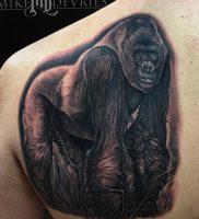 фото тату горилла от 27.03.2018 №116 — gorilla tattoo — tattoo-photo.ru