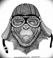 фото тату горилла от 27.03.2018 №119 — gorilla tattoo — tattoo-photo.ru