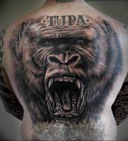фото тату горилла от 27.03.2018 №125 — gorilla tattoo — tattoo-photo.ru