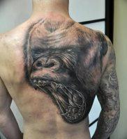 фото тату горилла от 27.03.2018 №126 — gorilla tattoo — tattoo-photo.ru