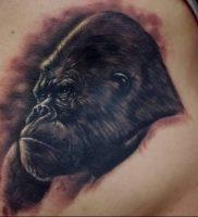 фото тату горилла от 27.03.2018 №127 — gorilla tattoo — tattoo-photo.ru