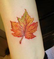 фото тату кленовый лист от 14.04.2018 №085 — maple leaf tattoo — tattoo-photo.ru