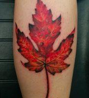 фото тату кленовый лист от 14.04.2018 №090 — maple leaf tattoo — tattoo-photo.ru