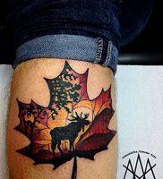 фото тату кленовый лист от 14.04.2018 №092 — maple leaf tattoo — tattoo-photo.ru