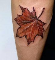 фото тату кленовый лист от 14.04.2018 №095 — maple leaf tattoo — tattoo-photo.ru