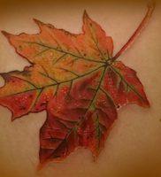 фото тату кленовый лист от 14.04.2018 №096 — maple leaf tattoo — tattoo-photo.ru