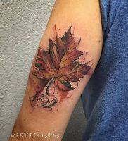 фото тату кленовый лист от 14.04.2018 №102 — maple leaf tattoo — tattoo-photo.ru
