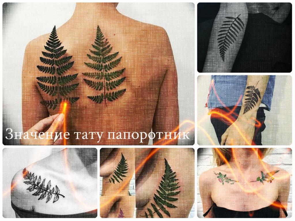 Значение тату папоротник - коллекция примеров готовых рисунков татуировки на фото