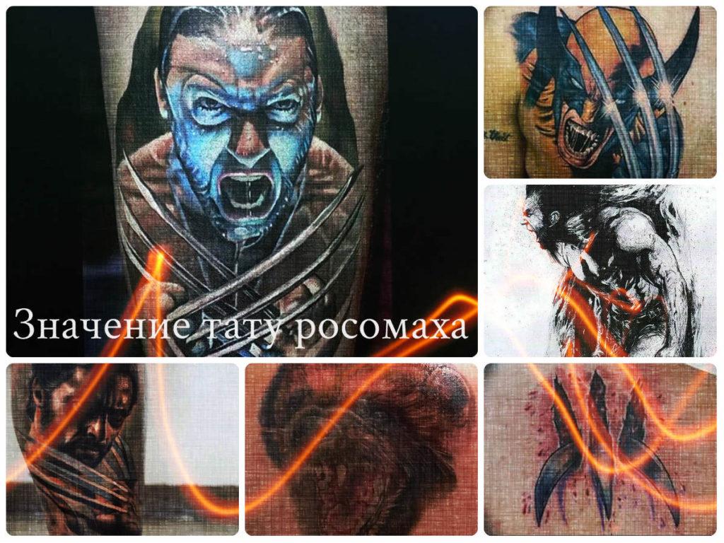 Значение тату росомаха - коллекция фото примеров рисунков готовых татуировок