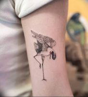 фото тату аист от 18.04.2018 №011 — tattoo stork — tatufoto.com