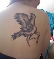 фото тату аист от 18.04.2018 №012 — tattoo stork — tatufoto.com