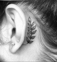 фото тату папоротник от 27.04.2018 №096 — tattoo fern — tattoo-photo.ru