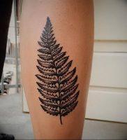 фото тату папоротник от 27.04.2018 №105 — tattoo fern — tattoo-photo.ru