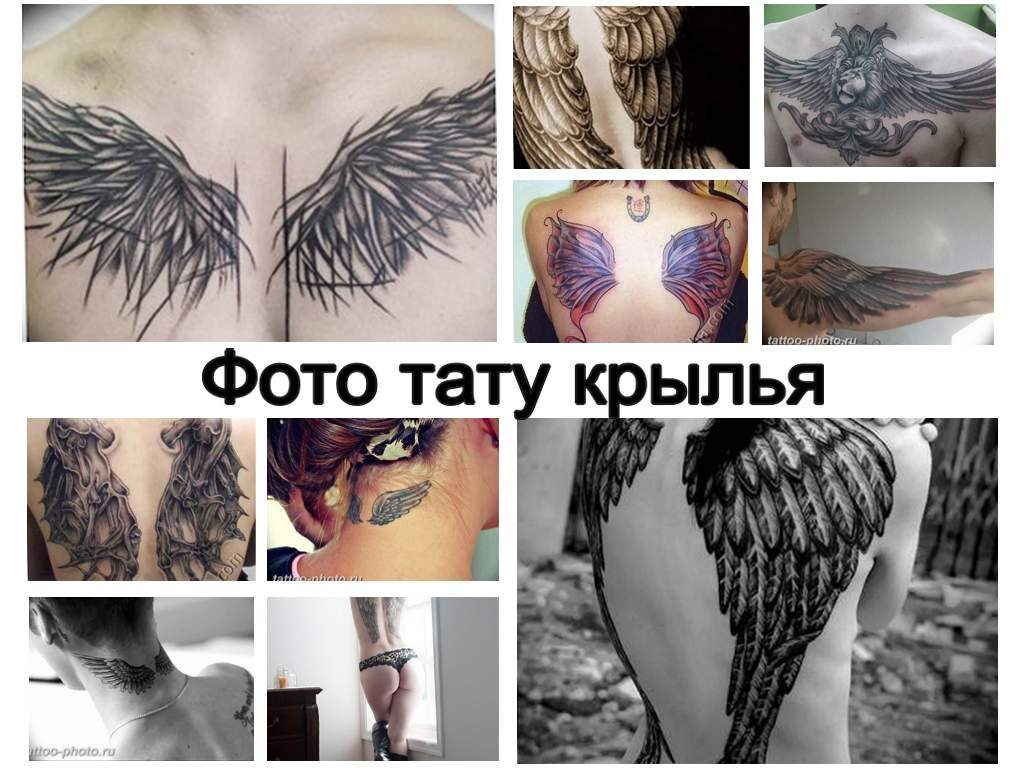 Фото тату крылья - коллекция готовых рисунков и информация