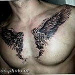 фото тату крылья 23.12.2018 №002 - photo tattoo wings - tattoo-photo.ru
