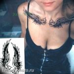 фото тату крылья 23.12.2018 №119 - photo tattoo wings - tattoo-photo.ru