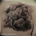 фото тату лошадь 24.12.2018 №005 - photo horse tattoo - tattoo-photo.ru